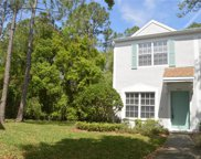 8550 Hunters Key Circle, Tampa image