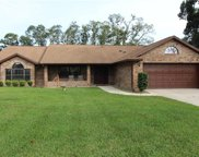 1419 Canary Drive, Deland image