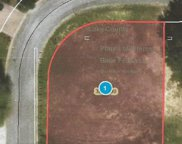 10843 Priebe Road, Clermont image