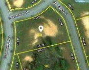 113 Littonberry St Unit Lot 391, Oak Ridge image