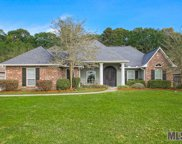 12435 Lakeland Dr, Walker image