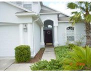 2713 Butterfly Landing Drive, Land O' Lakes image