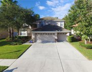 10639 Pearl Berry, Land O Lakes image