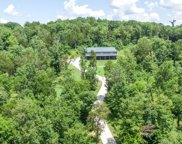 1372 Cliff Amos Rd, Spring Hill image