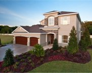 11337 Hidden Valley Lane, Riverview image