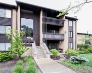 6137 Knoll Wood Road Unit 307, Willowbrook image