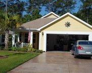 721 Bay Hill Court, Murrells Inlet image