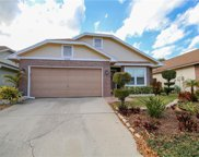 2202 Springrain Drive, Clearwater image