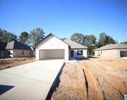 79 Carriage House Rd, Bessemer image