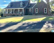 250 Country Ln, Pell City image
