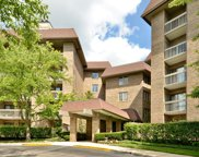 1220 Rudolph Road Unit 1P, Northbrook image
