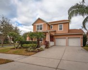 5309 Lemon Twist Lane, Windermere image