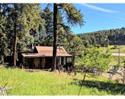 26764 Rascal Lane, Conifer image