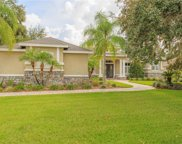 6106 Wild Orchid Drive, Lithia image