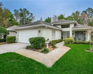 1338 Dawsbury Way, New Port Richey image