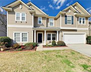 341  Mount Side Way, Fort Mill image