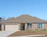 40111 Chestnut Oak Dr, Gonzales image