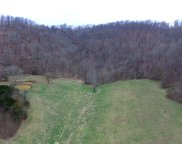 Burks Hollow Rd Tracts 4-7, Christiana image
