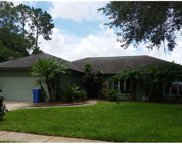 9205 Cypresswood Circle, Tampa image