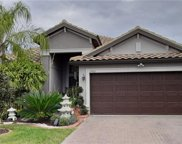 11932 Frost Aster Drive, Riverview image