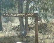 29/31/33 Cottonwood Loop, Mosca image