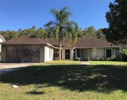 228 Red Maple Drive, Kissimmee image