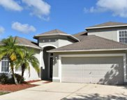 7812 Abbey Mist Cove, Tampa image