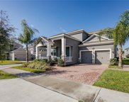 8028 Valencia Blossom Way, Winter Garden image