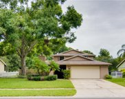 16212 W Course Drive, Tampa image