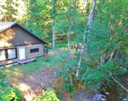 161 Coal Creek Dr, Packwood image