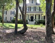 1769 Greenspoint Court, Mount Pleasant image