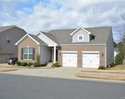 411  Anvil Draw Place, Rock Hill image