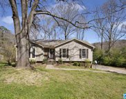 773 Chestnut Dr, Pinson image