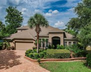 21107 Bircholm Court, Land O' Lakes image