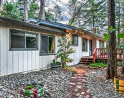 1115 Forest Way, Brookdale image