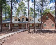 3705 Point Of Pines Way, Flagstaff image