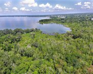 1230 Natureland Court, Mount Dora image