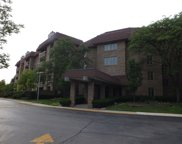1250 Rudolph Road Unit 3E, Northbrook image