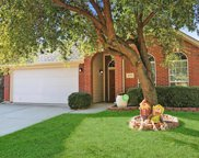 4516 Butterfly Way, Fort Worth image