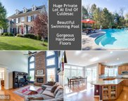 42651 GULICKS LANDING COURT, Ashburn image