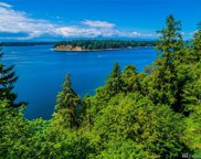 808 Russell Rd, Lakebay image