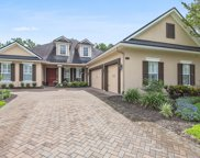 317 CAPE MAY AVE, Ponte Vedra image