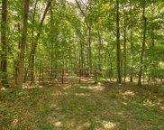 31.1 Acres Off Chosen Rdg, Blairsville image