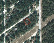 00 St George Drive, Dunnellon image