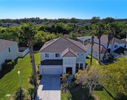 4135 Little Gap Loop, Ellenton image
