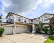 13526 Fox Glove Street, Winter Garden image