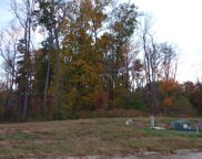 38 Meadowland, Clarksville image