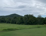 Peytonsville-Trinty Rd, Franklin image