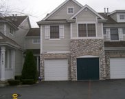 21345 Windy Hill Drive Unit 21345, Frankfort image