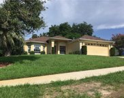 867 Meadow Park Drive, Minneola image
